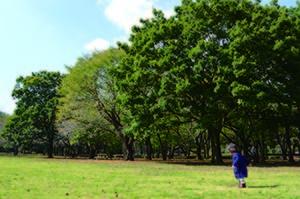 campus_park (2)