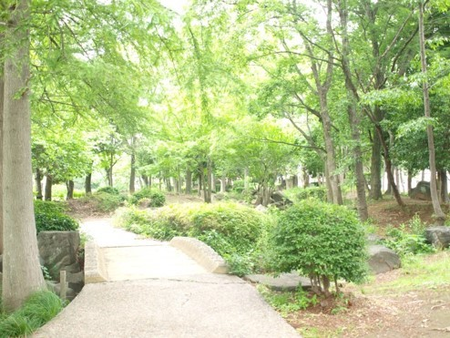 nagareyama centerpark3