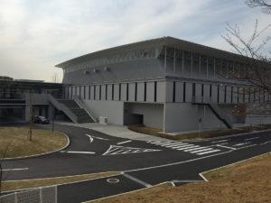 201603hanami-nagareyama02