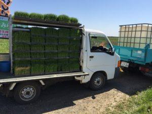 トラックにはたくさんの苗!