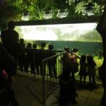 ナイトツアー 提供 足立区生物園