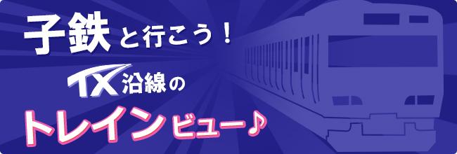 kotetsu_banner_650