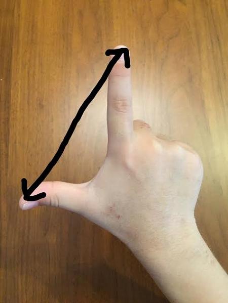 矢印の長さ×1.5が箸の長さの目安