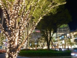 kashiwanoha_illumination_02